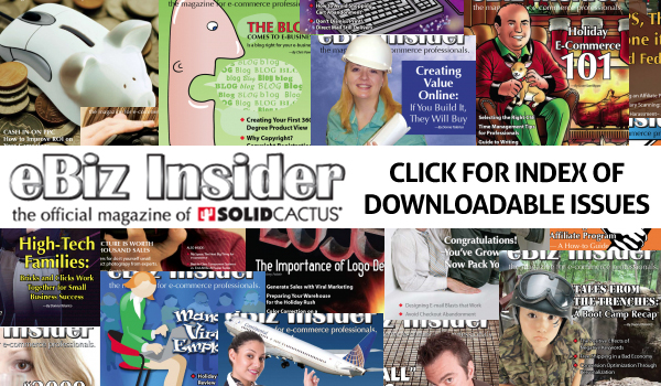 Click for an index of downloadable issues of eBiz Insider Magazine
