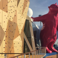 The Big Purple Bear on Quantum of the Seas