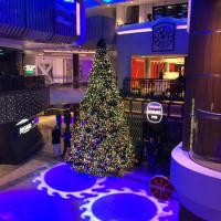 The giant Christmas tree on Quantum of the Seas