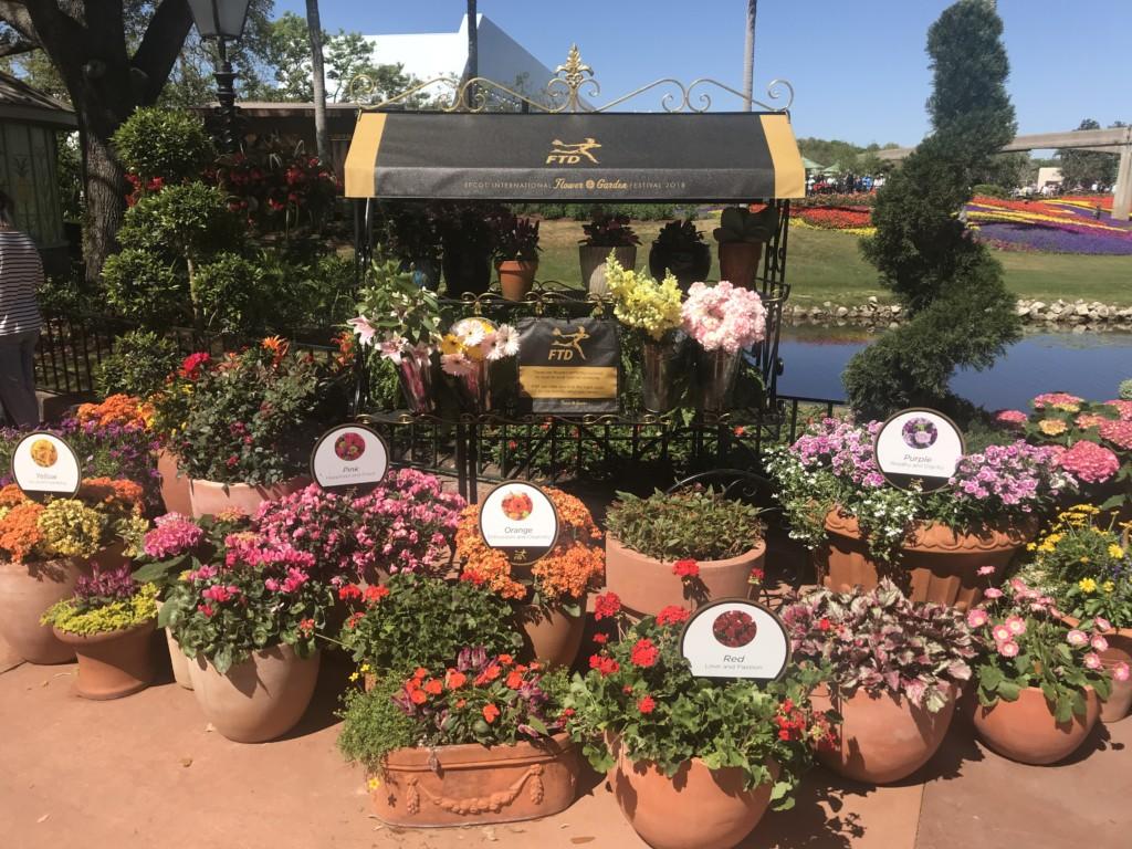 Photo Tour Part 2 2018 Epcot Flower Garden Festival Scott Sanfilippo